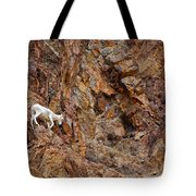 Where Wolves Don't Tread Tote Bag