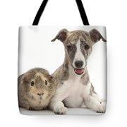 Whippet Pup With Guinea Pig Tote Bag