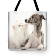 Whippet Puppy And Kitten Tote Bag