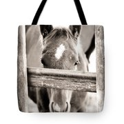 Whiskers 2 Tote Bag