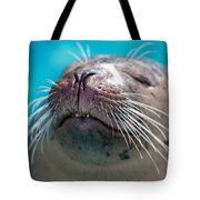 Whiskers Of A Seal Tote Bag