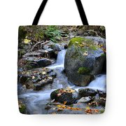 Whisketown Stream In Autumn Tote Bag