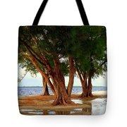 Whispering Trees Of Sanibel Tote Bag by Karen Wiles