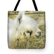 White Alpaca Photograph Tote Bag