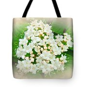 White And Cream Hydrangea Blossoms Tote Bag
