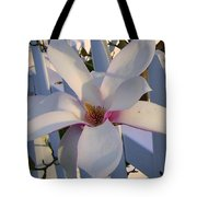 White And Pink Magnolia Tote Bag