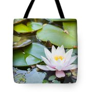 White And Pink Water Lily Tote Bag