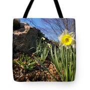 White And Yellow Daffodil Flower Tote Bag