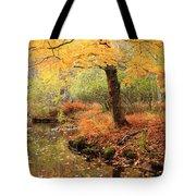 White Ash And Stream In Autumn Tote Bag