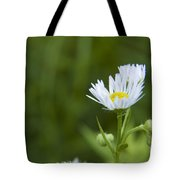 White Aster Wildflower Tote Bag
