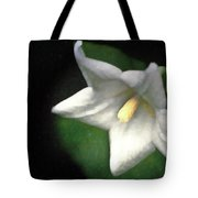 White Balloon Flower-faux Painting Tote Bag
