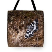 White-banded Black Moth Tote Bag