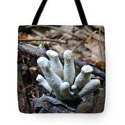 White Club Mushroom - Clavulina  Tote Bag