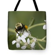 White Crownbeard Wildflowers Pollinated By A Bumble Bee With His Bags Packed Tote Bag