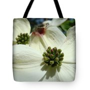 White Dogwood Flowers Art Prints Floral Tote Bag by Baslee Troutman