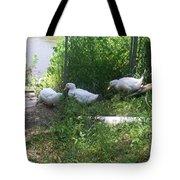 White Ducks On A Ramp Tote Bag