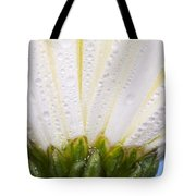 White Flower Head With Dew Tote Bag