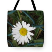 White Flower On The Fence Tote Bag