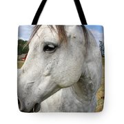 White Horse Closeup Tote Bag