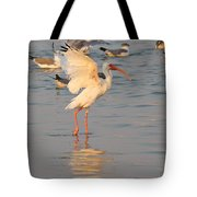 White Ibis With Wings Raised Tote Bag