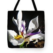 White Iris  Tote Bag by Daniele Smith