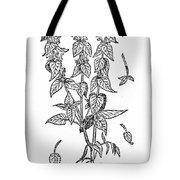 White Nettle Tote Bag