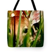 White Tailed Deer Fawn Hiding In Grass Tote Bag