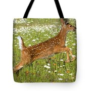 White Tailed Deer Fawn In Field Of Tote Bag