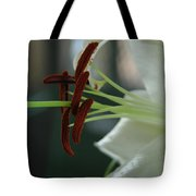 White Tiger Lily II Tote Bag