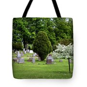 White Tree In Cemetery Tote Bag
