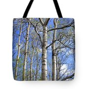 White Trees Against A Blue Sky Tote Bag