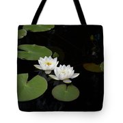 White Water-lily 4 Tote Bag