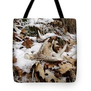 Whitetail Deer Antler  - Half Of 10 Tote Bag