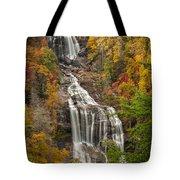 Whitewater Falls 1 Tote Bag