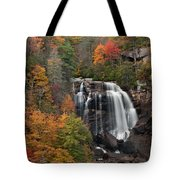 Whitewater Falls 2 Tote Bag