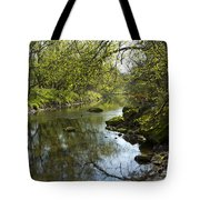 Whitewater River Spring 10 Tote Bag