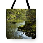 Whitewater River Spring 11 Tote Bag