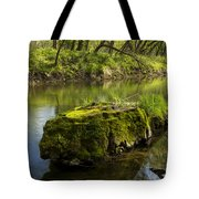 Whitewater River Spring 12 Tote Bag