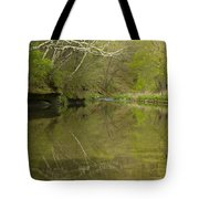 Whitewater River Spring 13 Tote Bag