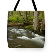 Whitewater River Spring 18 Tote Bag