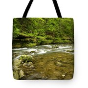 Whitewater River Spring 8 C Tote Bag