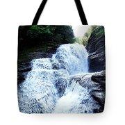 Whittaker Falls Ny Tote Bag