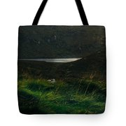 Wicklow Mountains And Lake Tote Bag