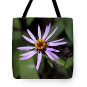 Wild Aster Tote Bag