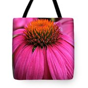 Wild Berry Purple Cone Flower Tote Bag