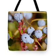 Wild Blue Berries With Water Drops  Tote Bag