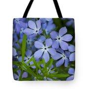 Wild Blue Phlox Flower 1 A Tote Bag