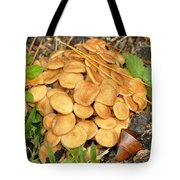 Wild Bunch Tote Bag