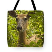 Wild Doe Tote Bag