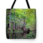 Wild Florida - Hillsborough River Tote Bag